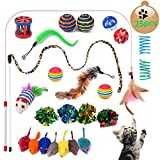 Yangbaga Jouet Chat lot - Jouer Chat - Souris Sisal, Boule Plume, Canne a Peche Inclus, Kitten Toys Variété Pack Chaton Chat (25pc)