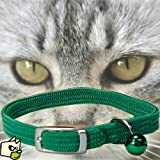 Collier Chat Elastique Noir Chrome 28CM
