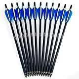 "GPP Hunting Archery Carbon Arrow 20"" Crossbow Bolts Arrow with 4"" vanes and Replaced Arrowhead/Tip 12PC"
