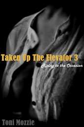 Taken Up The Elevator 3 Rising to the Occasion: Sex In Public (English Edition)