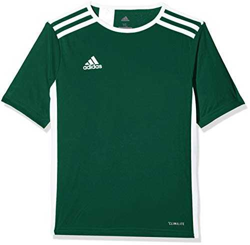 adidas Entrada 18 T-Shirt - Mixte Enfant - Vert (Collegiate Green/White) - 11-12 ans