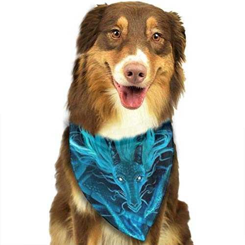 Hipiyoled Blue Dragon and Girl Mix Colour Pet Bandana Multifunctional Headwear
