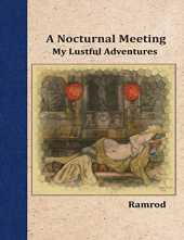 A Nocturnal Meeting: My Lustful Adventures (English Edition)