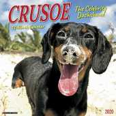 Crusoe the Celebrity Dachshund 2020 Calendar